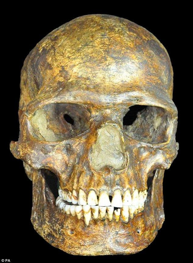 F0e5c330193912dfd70326cb02f26610--early-humans-human-evolution