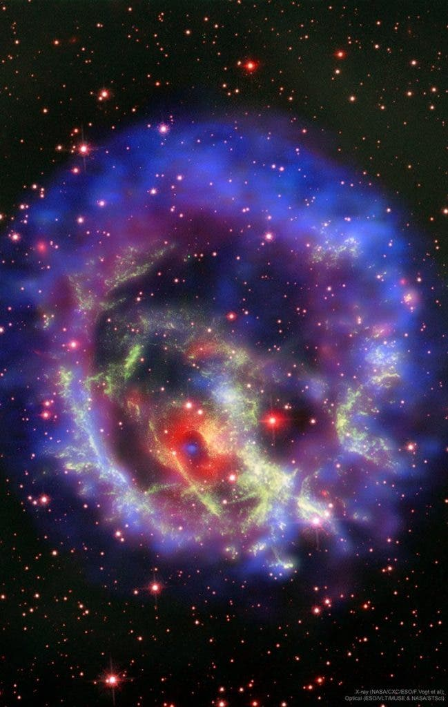 Supernova Neutron Star
