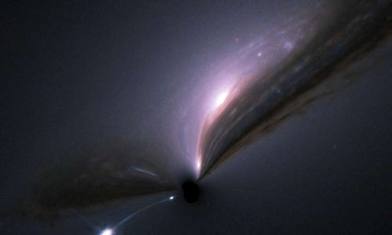 Black Hole Dark Matter