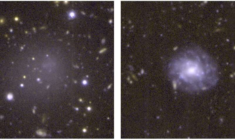 Anemic Early Galaxies