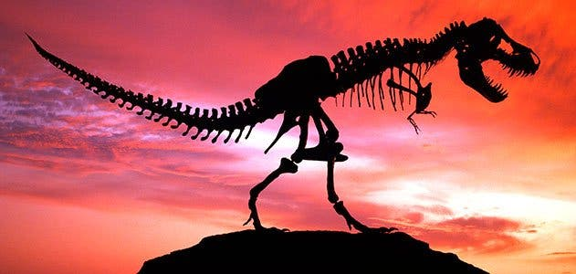 End of Dinosaur Epoch