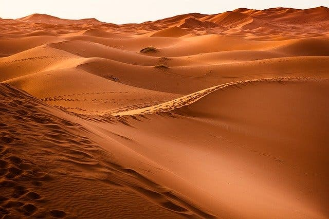 """The Sahara --""""The Most Dangerous Place in the History of Planet Earth"""""""