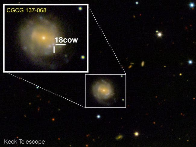 The Cow Supernova